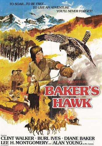 Picture for Baker's Hawk