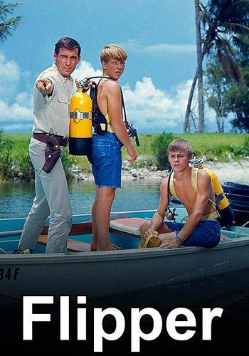Boyactors Flipper 1964 1968