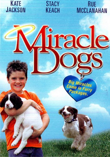 Picture for Miracle Dogs
