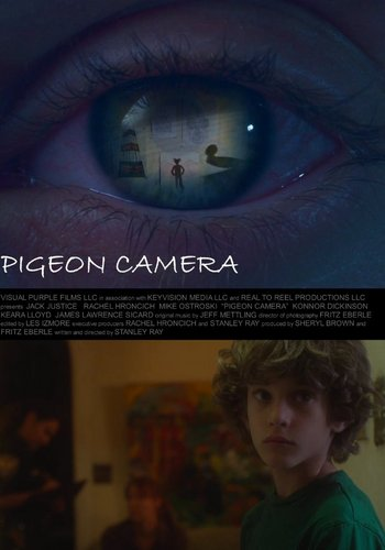 Picture for Pigeon Camera