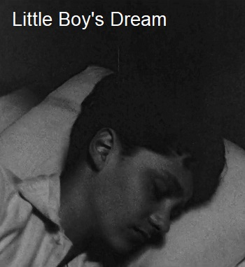 Picture for Little Boy's Dream